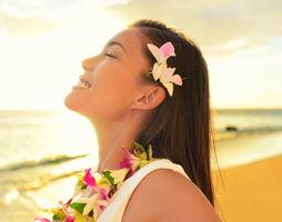 hawaii_zomer_254x200.jpg