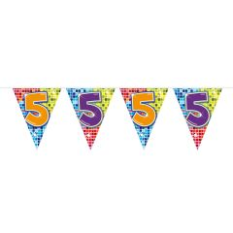 5 Jaar Vlaggenlijn Birthday Blocks - 6 meter
