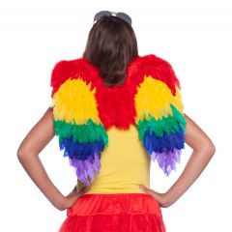 Engelen Vleugels Regenboog
